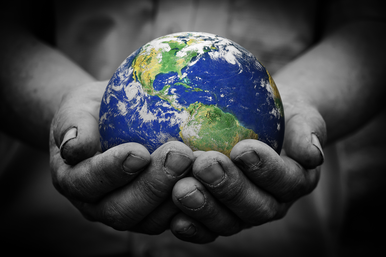 Earth In Hand, Services - Peak Performance Chiropractic